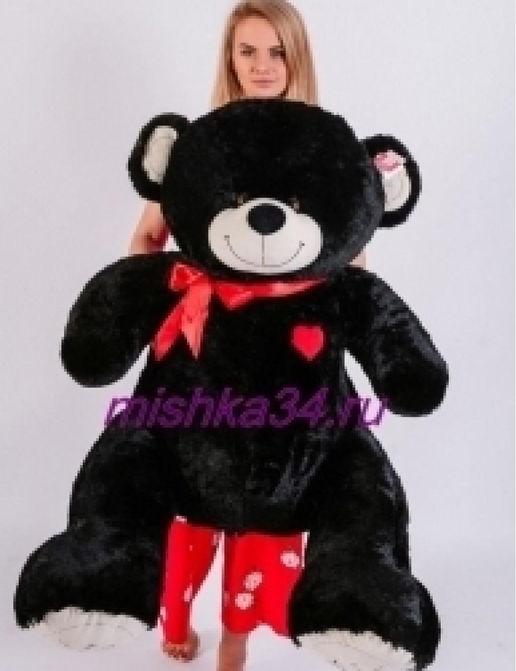 BLACK BEAR 150 см