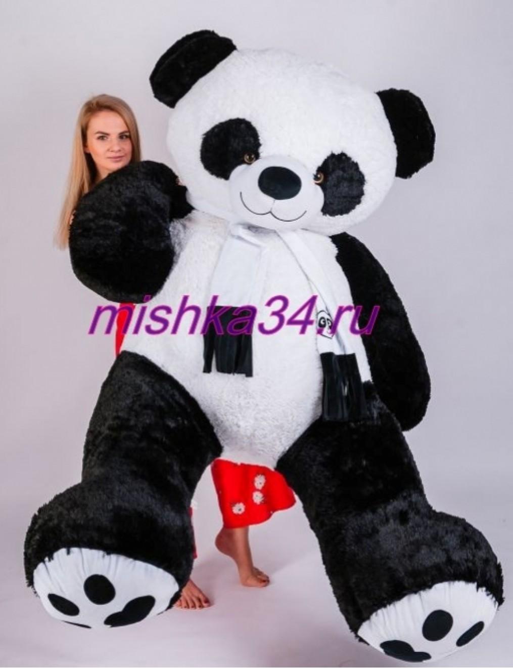 Панда 240 см